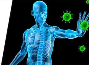enhancing the immune system