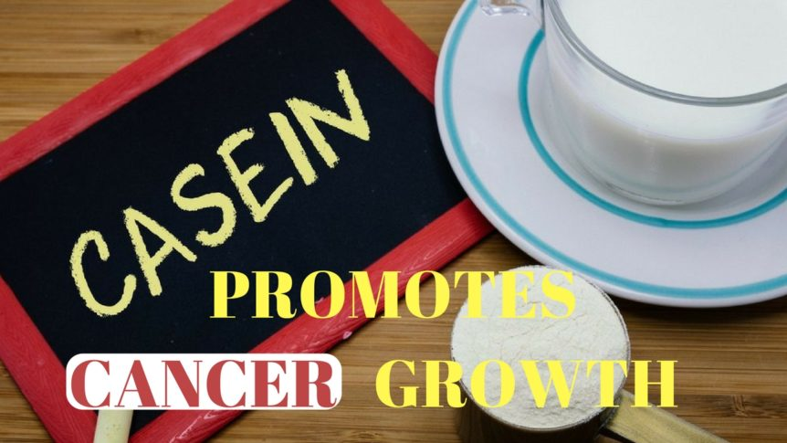 Casein Promotes Cancer Growth