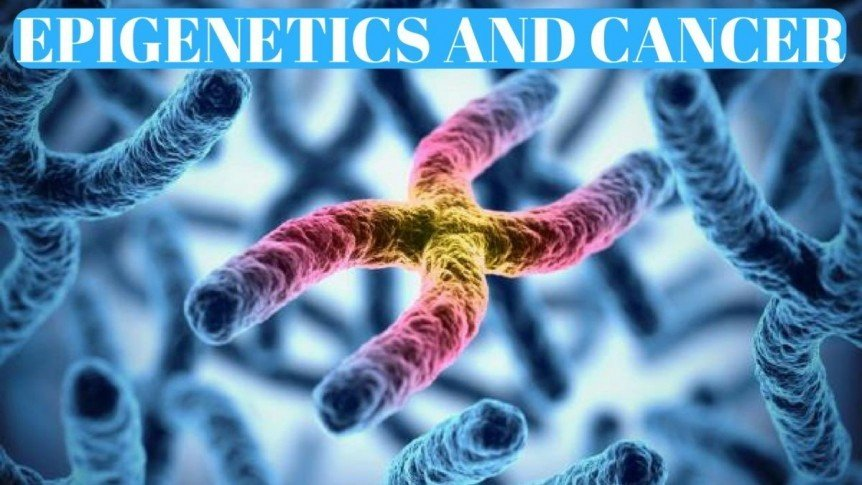 Does Our Epigenetics Cause Cancer?