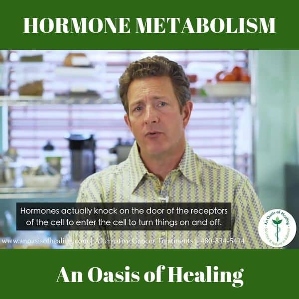 Hormonal Regulation Of Metabolism