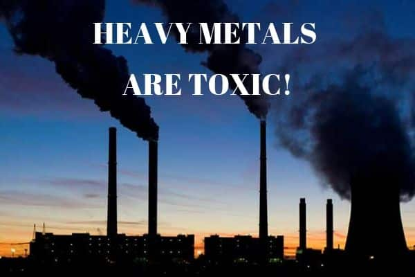 Why Heavy Metals Are Toxic?