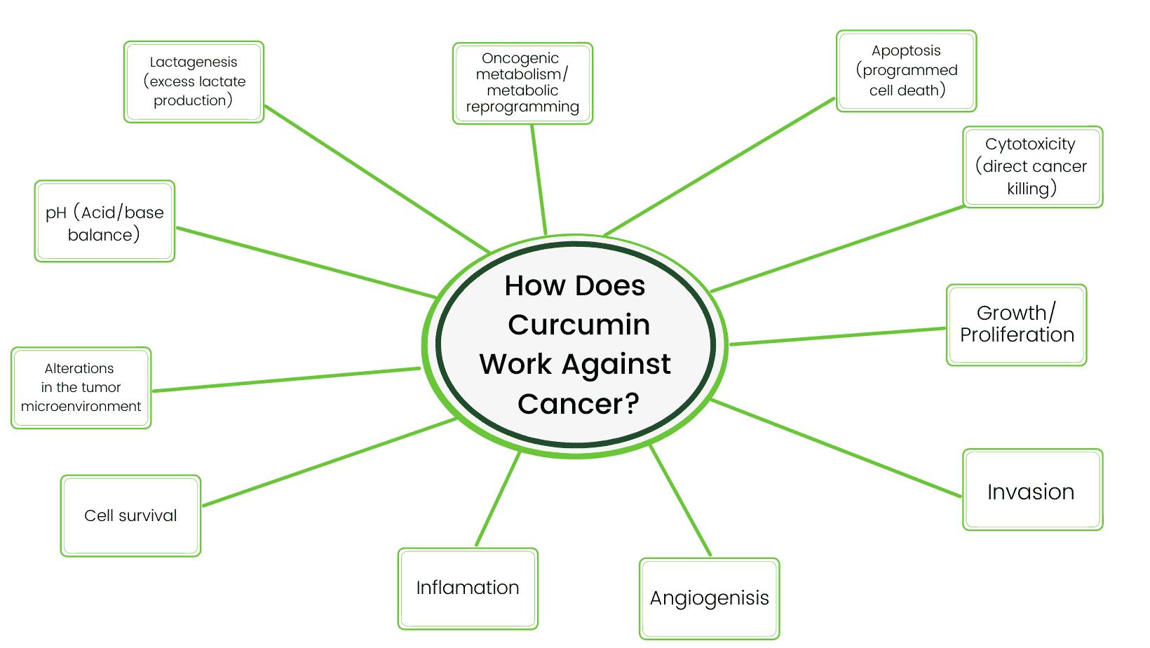 curcumin and cancer
