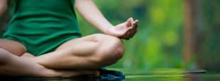 brochure meditation